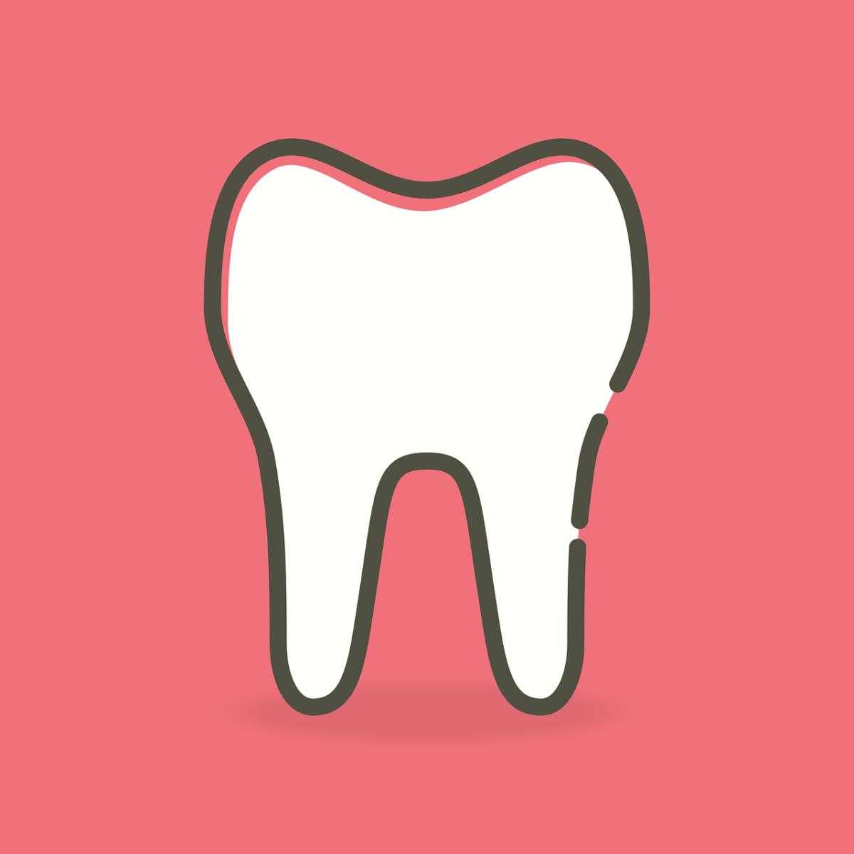 Śliczne urodziwe zęby także niesamowity cudny uśmiech to powód do dumy.